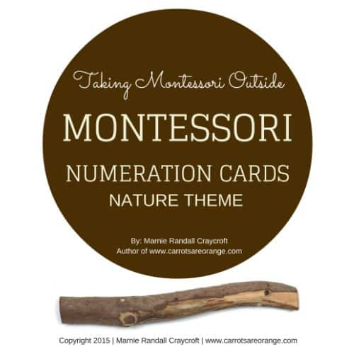 Montessori Nature Numeration