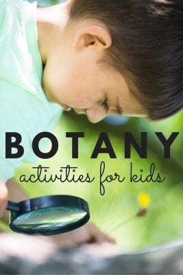 12 Rock Star Botany Activities for Kids TEXT