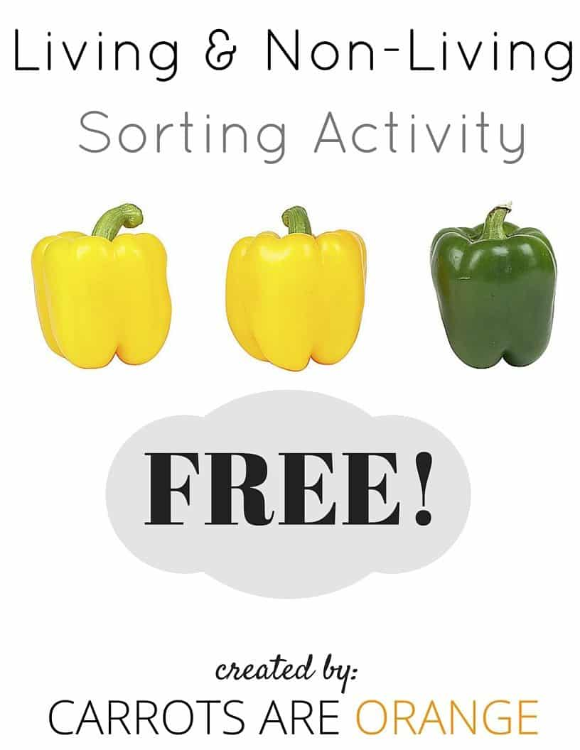 zoology activities non-living living sort