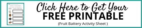 Fruit Electricity Activity Sheets