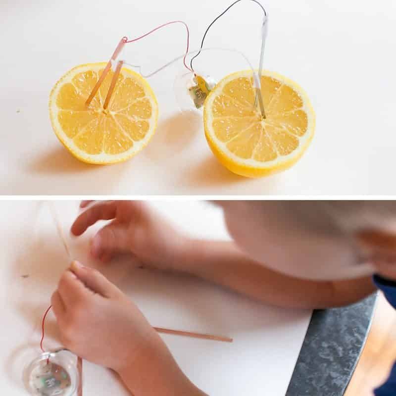Check out a classic science activity for kids! Teach kids about electricity with a lemon battery! Fruit electricity will hook kids on wanting to learn more!
