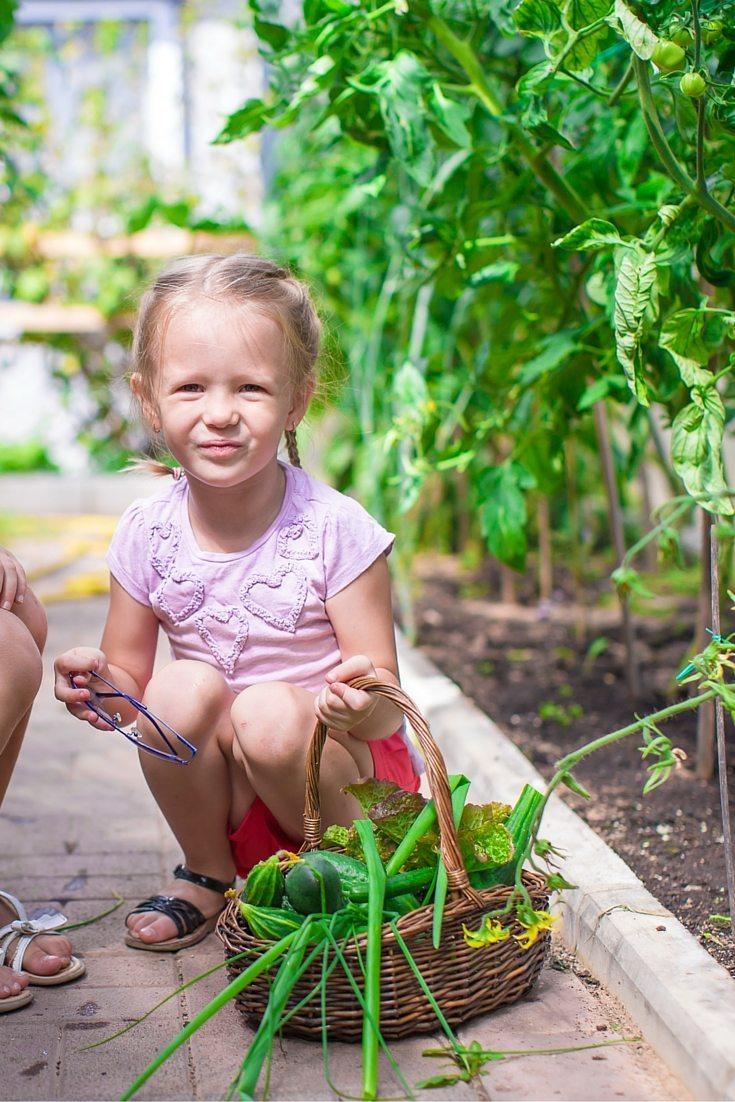 Garden planner a perfect first step in gardening with for Gardening with children
