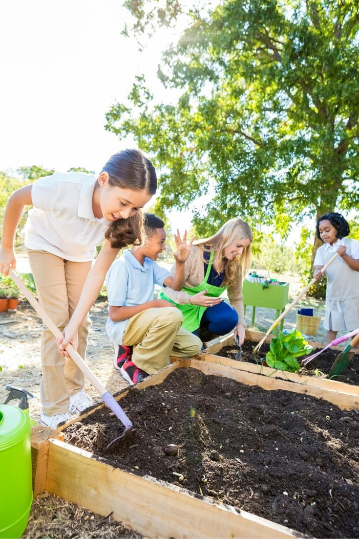 Pinterest What Makes a Successful Garden with Kids?