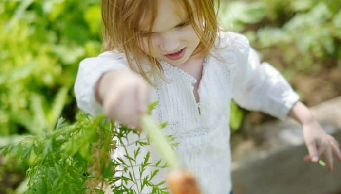 Are You Planting Seeds with Kids?