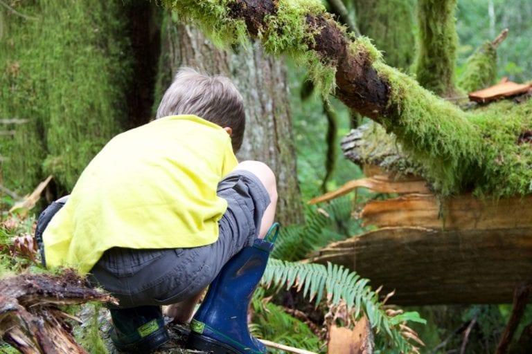 children in nature log
