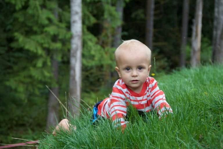 children in nature grass