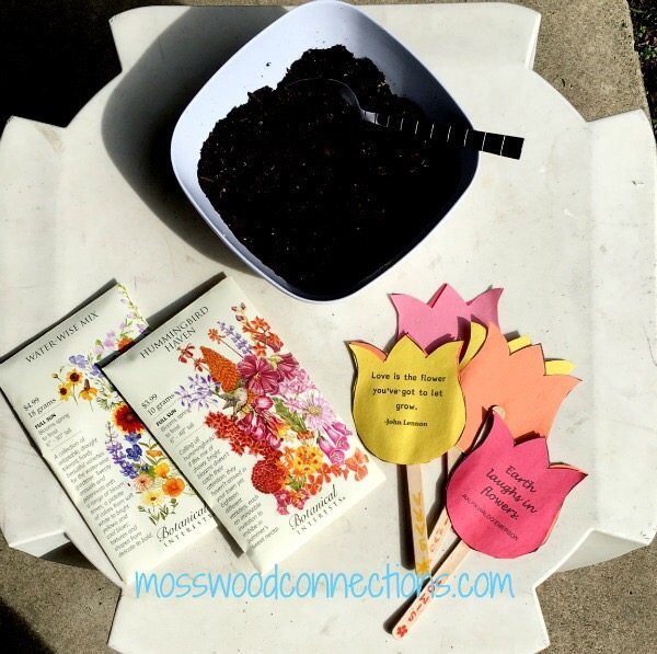 seeds activities for mom