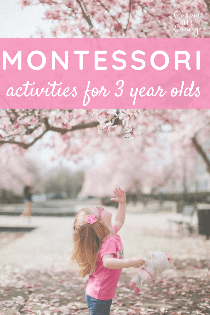 Montessori Activities for 3 year olds.