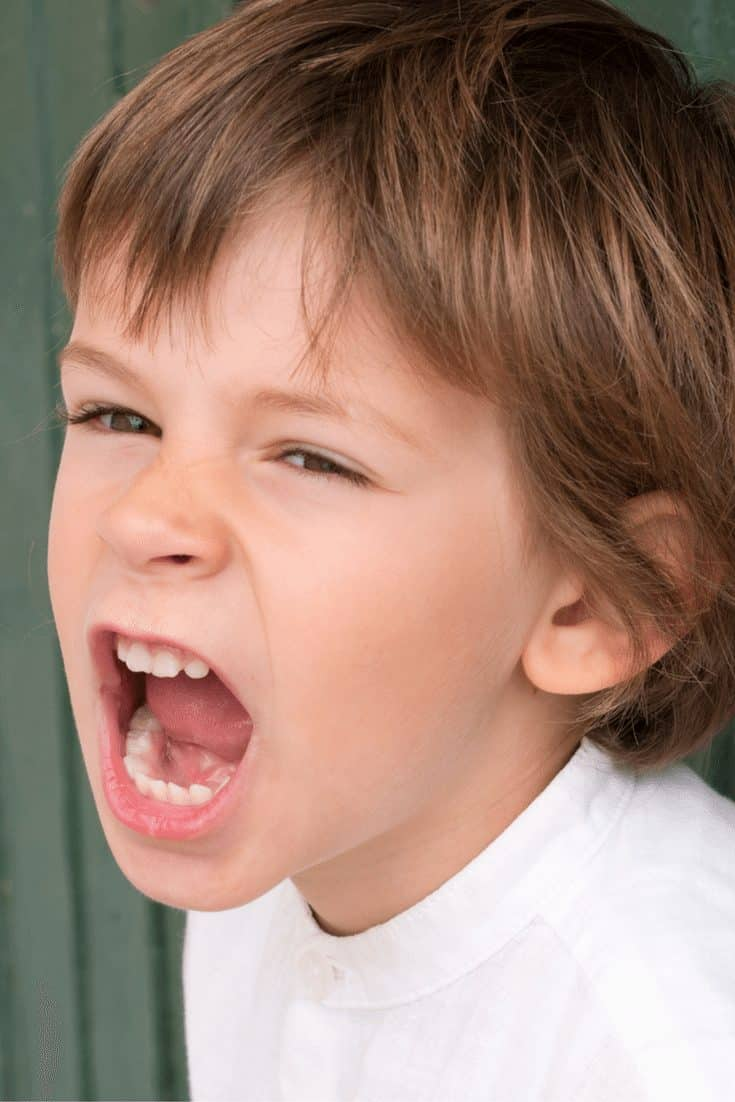 The Beginners Guide to Handling Your Child's Epic Meltdowns