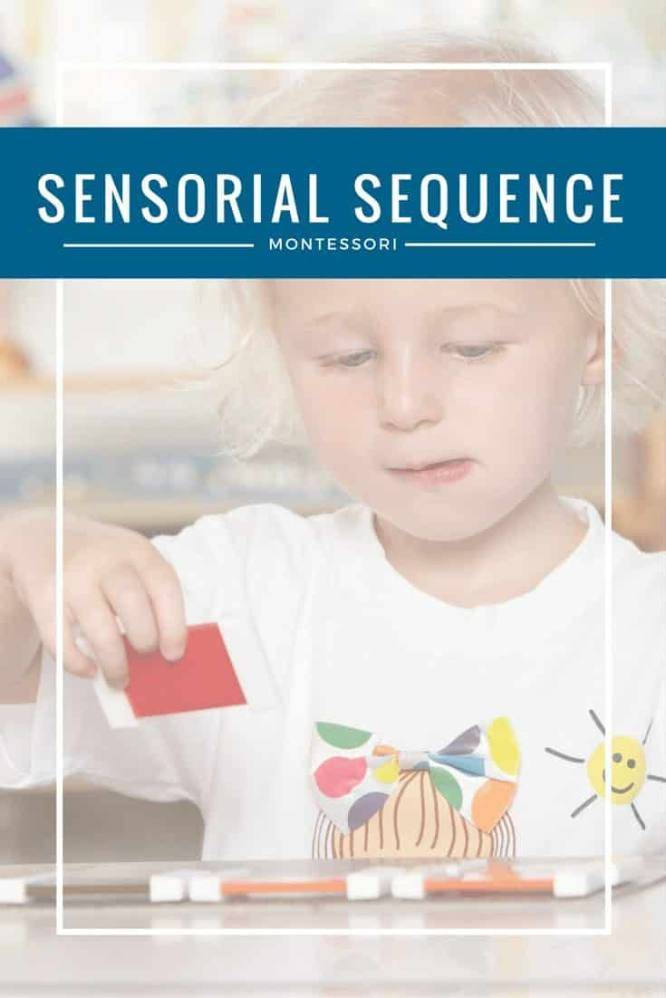Learn Montessori's Sensorial Sequence
