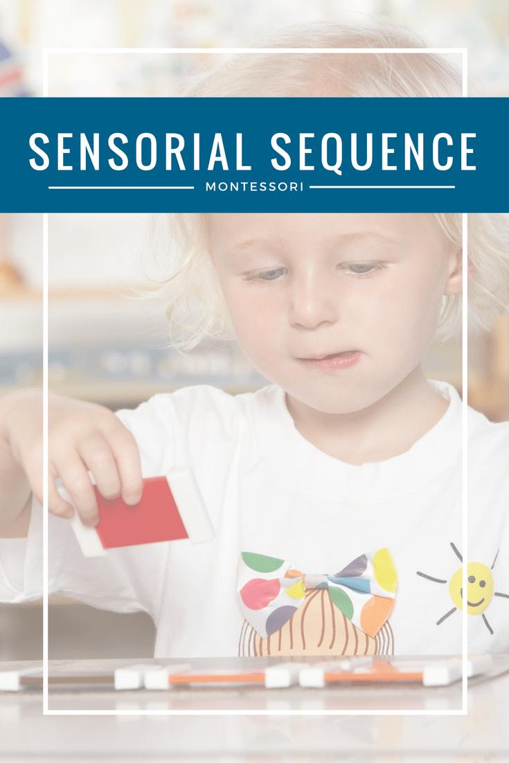 Learn Montessori's Sensorial Sequence