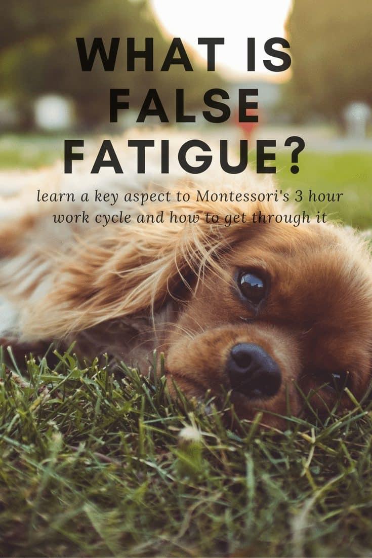 what-is-false-fatigue