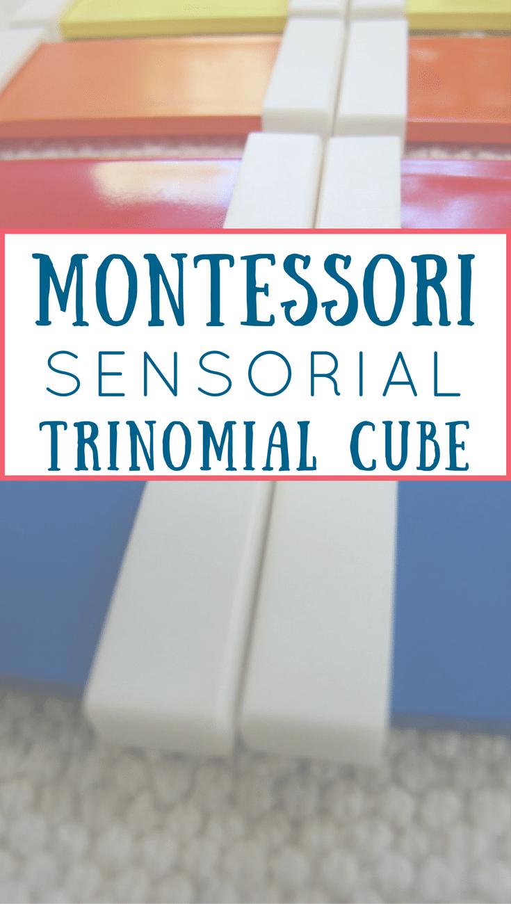 Montessori Trinomial Cube lesson