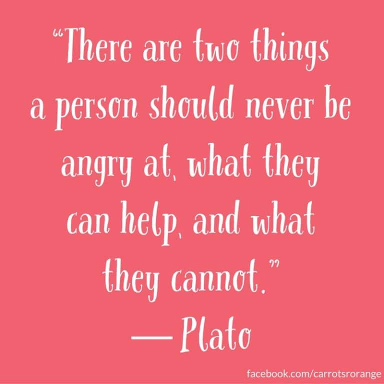"""There are two things a person should never be angry at, what they can help, and what they cannot.""  ― Plato"