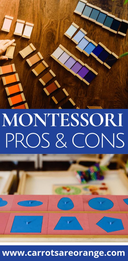 Explore Montessori's Pros & Cons