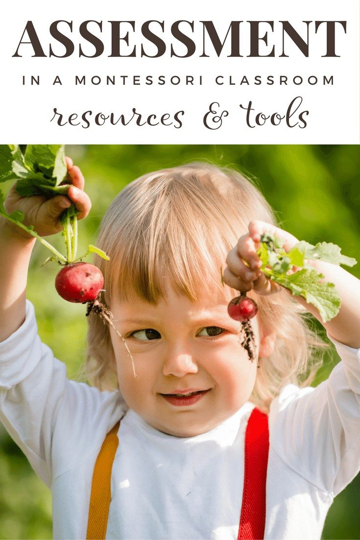 Assessment Resources for a Montessori Environment