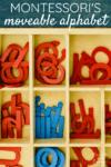 5 Montessori Lessons Using the Moveable Alphabet