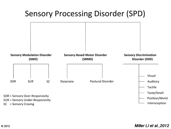 Types of Sensory Processing Disorders