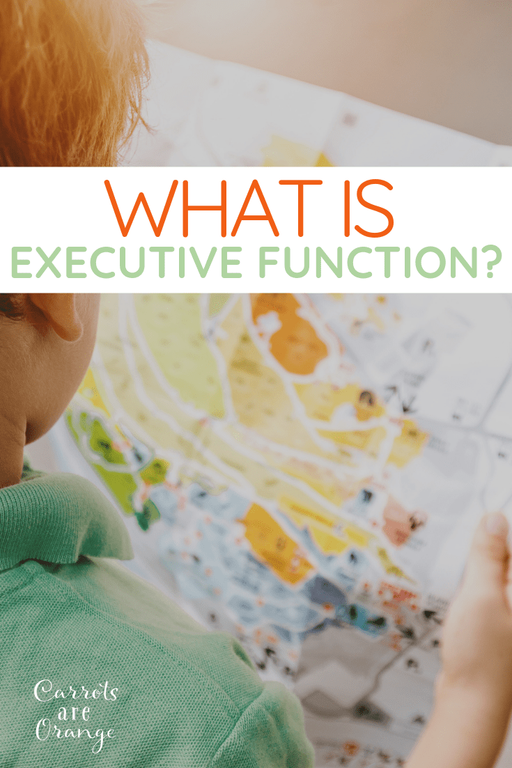 Help a child navigate the world with strong executive functioning skills.