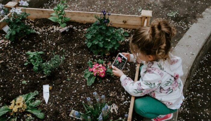 Montessori Services Spring Themed Materials