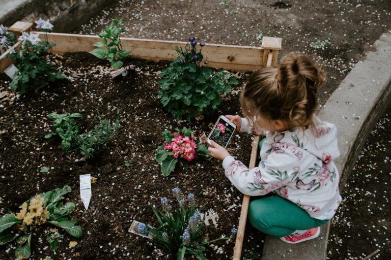 A young girl gardening