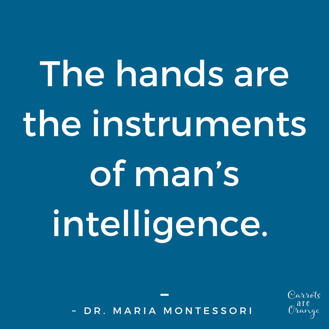 Montessori Quote on Movement