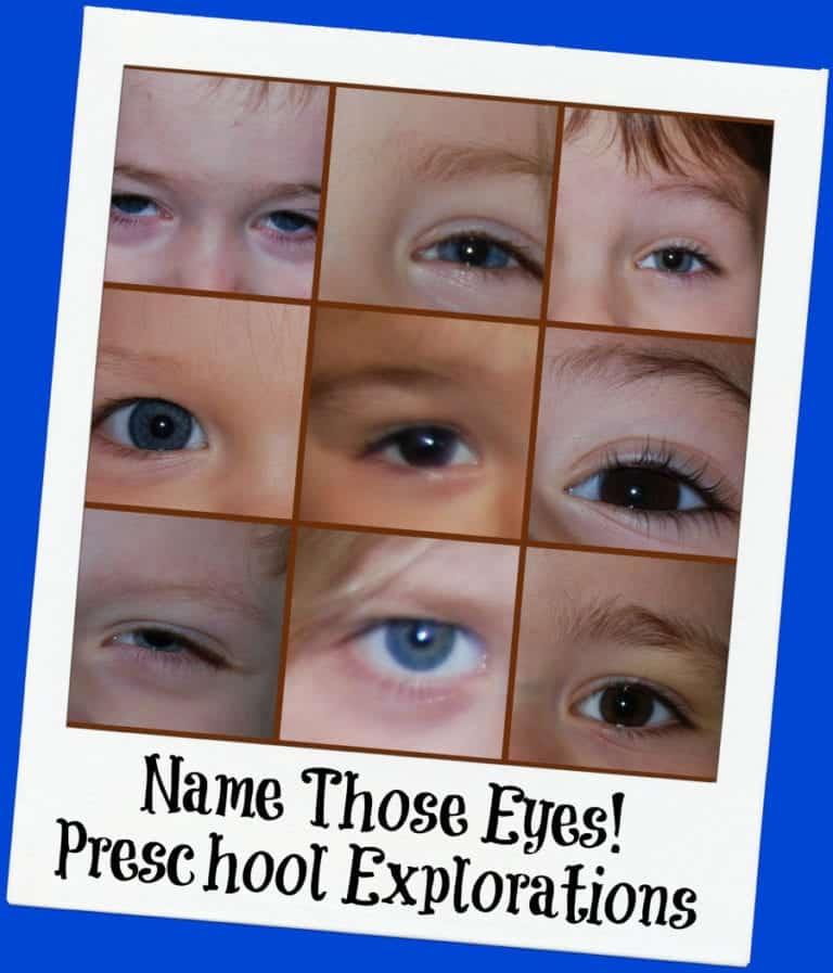Exploring Eyes in Preschool