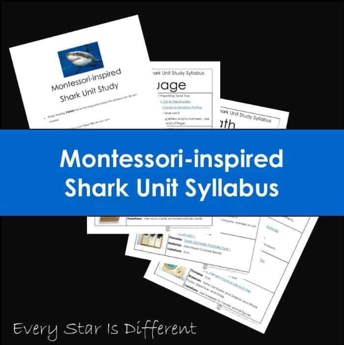 Montessori Shark Unit