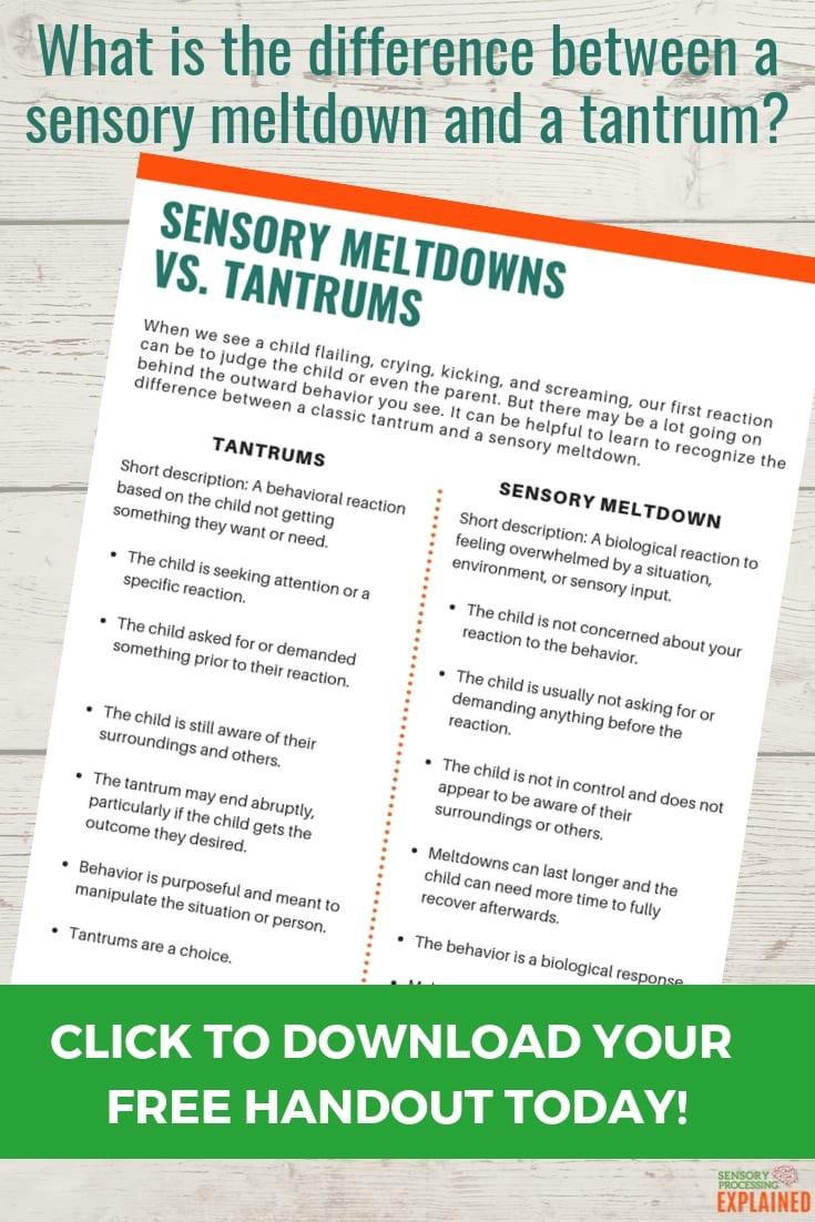Sensory Meltdowns or Tantrums Guide